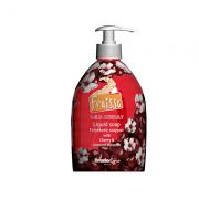 Υγρό σαπούνι wild cherry 500ml Fruisse